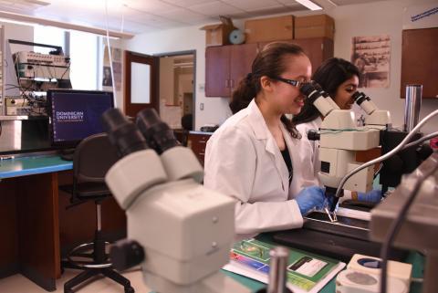 Neuroscience | Dominican University